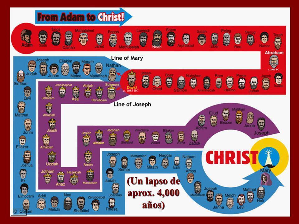 76 generaciones Lucas 3:23-38 nos informa que hay sólo 76 generaciones entre Adán y Cristo. Puesto que Adán es el primer hombre, el ser humano no ha e