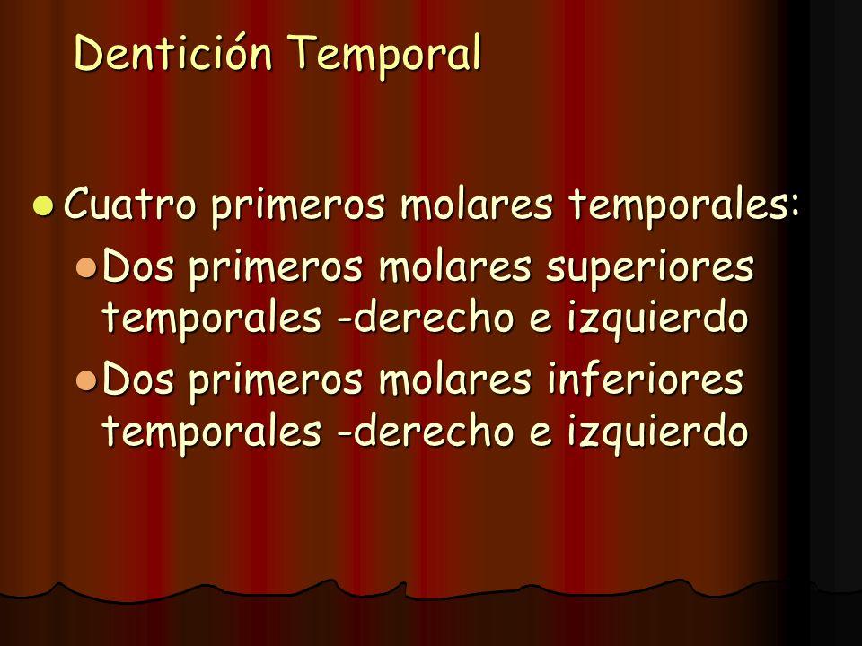 Dentición Temporal Cuatro primeros molares temporales: Cuatro primeros molares temporales: Dos primeros molares superiores temporales -derecho e izqui