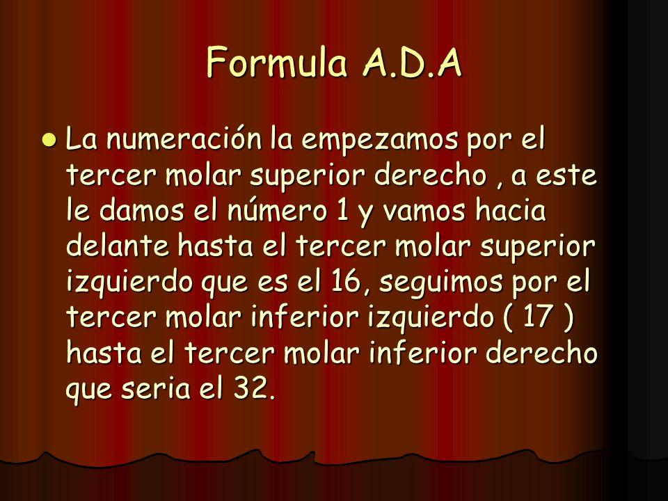 Formula A.D.A La numeración la empezamos por el tercer molar superior derecho, a este le damos el número 1 y vamos hacia delante hasta el tercer molar