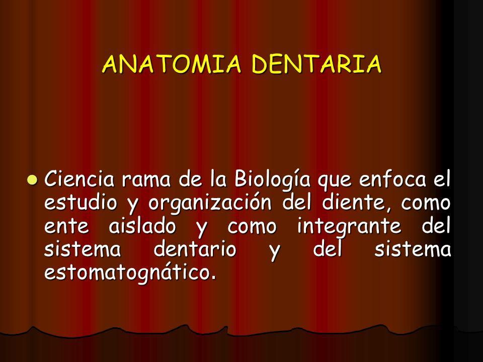 ANATOMIA DENTARIA Ciencia rama de la Biología que enfoca el estudio y organización del diente, como ente aislado y como integrante del sistema dentari
