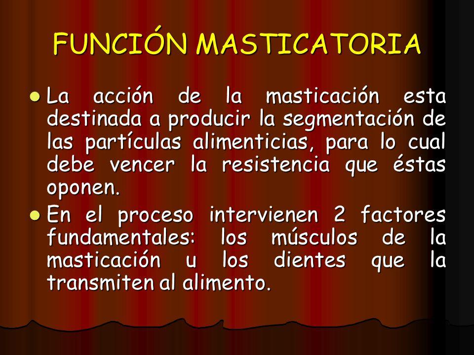 FUNCIÓN MASTICATORIA La acción de la masticación esta destinada a producir la segmentación de las partículas alimenticias, para lo cual debe vencer la