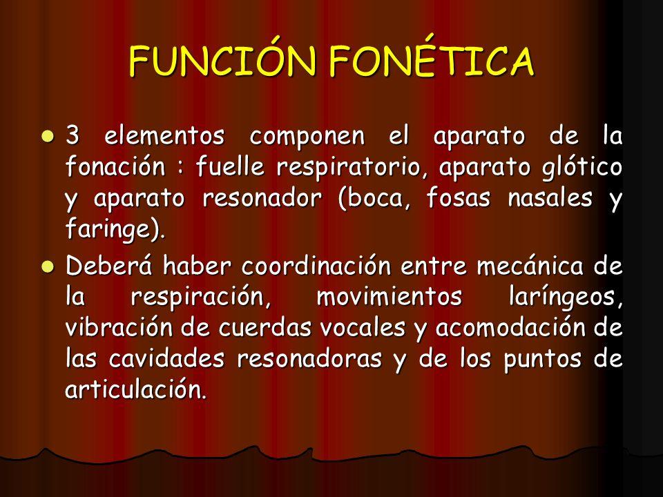 FUNCIÓN FONÉTICA 3 elementos componen el aparato de la fonación : fuelle respiratorio, aparato glótico y aparato resonador (boca, fosas nasales y fari