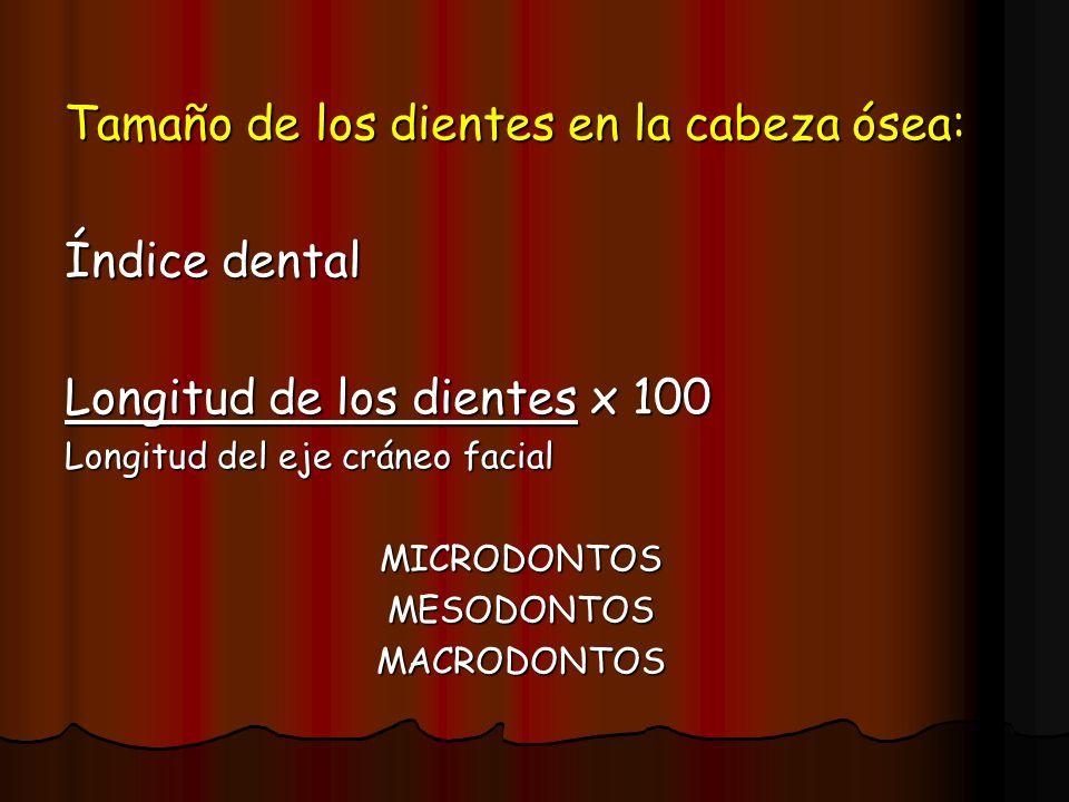 Tamaño de los dientes en la cabeza ósea: Índice dental Longitud de los dientes x 100 Longitud del eje cráneo facial MICRODONTOSMESODONTOSMACRODONTOS