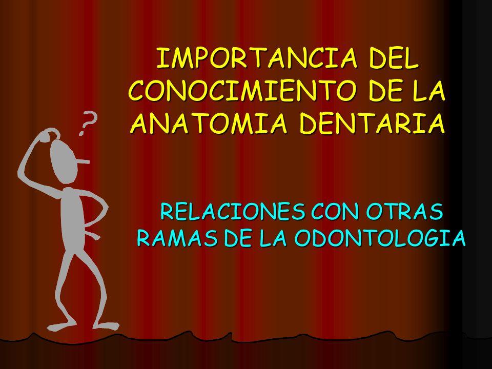IMPORTANCIA DEL CONOCIMIENTO DE LA ANATOMIA DENTARIA RELACIONES CON OTRAS RAMAS DE LA ODONTOLOGIA