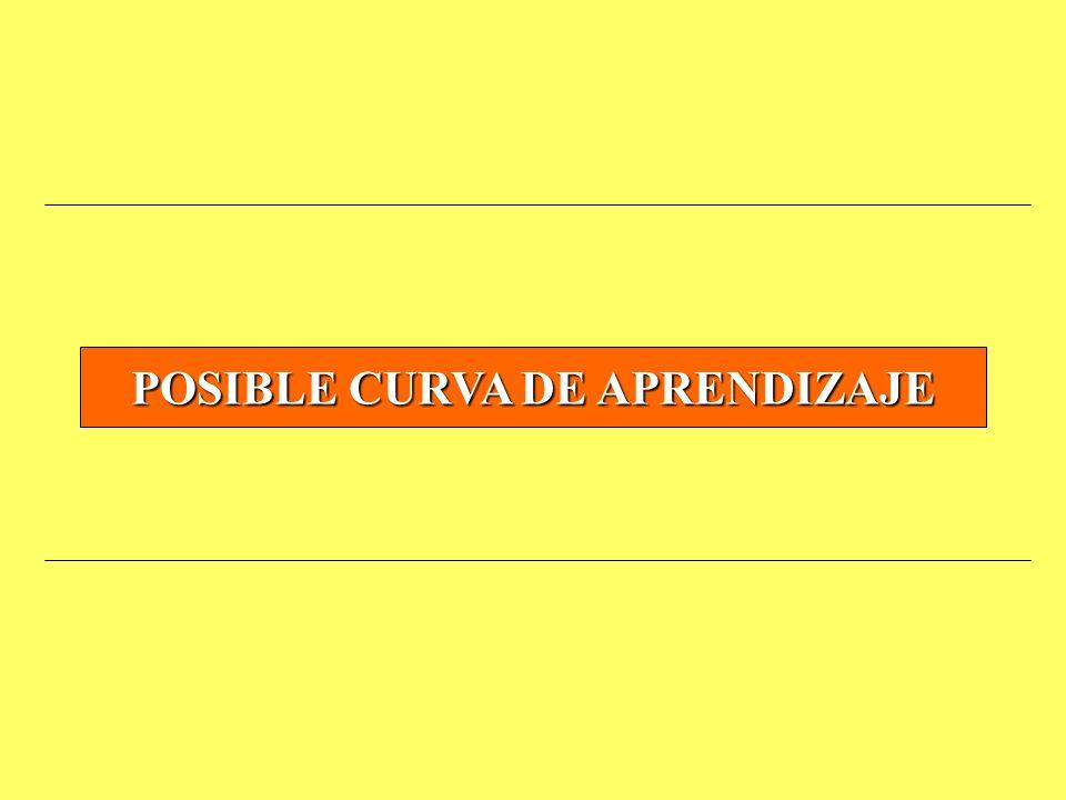POSIBLE CURVA DE APRENDIZAJE