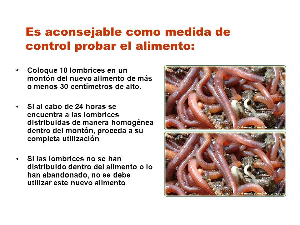 Es aconsejable como medida de control probar el alimento: Coloque 10 lombrices en un montón del nuevo alimento de más o menos 30 centímetros de alto.