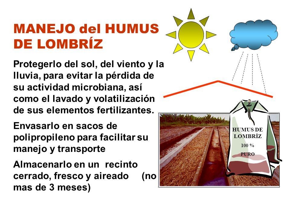 MANEJO del HUMUS DE LOMBRÍZ Protegerlo del sol, del viento y la lluvia, para evitar la pérdida de su actividad microbiana, así como el lavado y volati