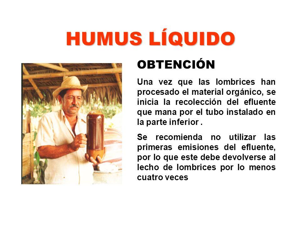 HUMUS LÍQUIDO OBTENCIÓN Una vez que las lombrices han procesado el material orgánico, se inicia la recolección del efluente que mana por el tubo insta