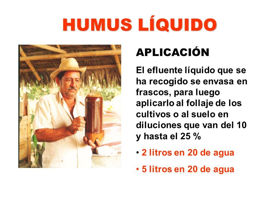 HUMUS LÍQUIDO APLICACIÓN El efluente líquido que se ha recogido se envasa en frascos, para luego aplicarlo al follaje de los cultivos o al suelo en di