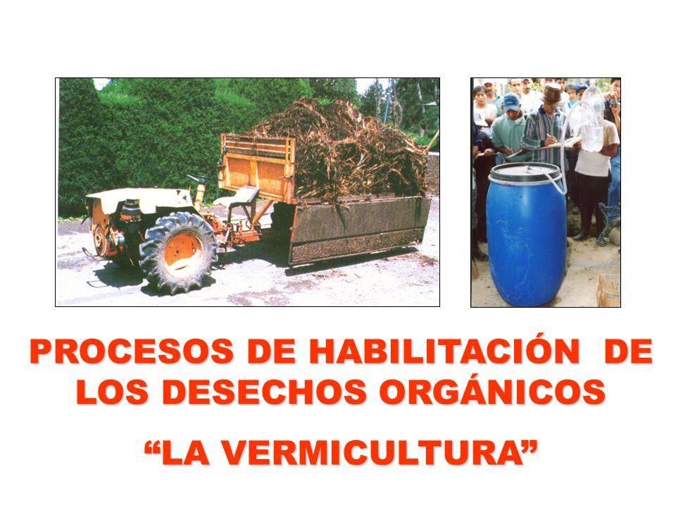 PROCESOS DE HABILITACIÓN DE LOS DESECHOS ORGÁNICOS LA VERMICULTURA