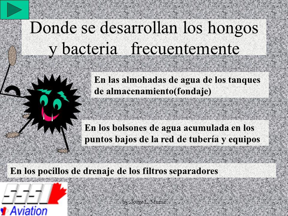 Donde se desarrollan los hongos y bacteria frecuentemente En las almohadas de agua de los tanques de almacenamiento(fondaje) En los bolsones de agua a