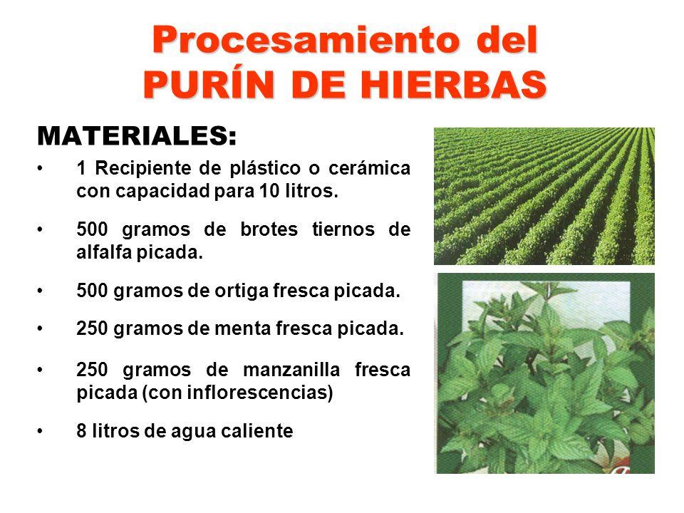 Procesamiento del PURÍN DE HIERBAS MATERIALES: 1 Recipiente de plástico o cerámica con capacidad para 10 litros. 500 gramos de brotes tiernos de alfal
