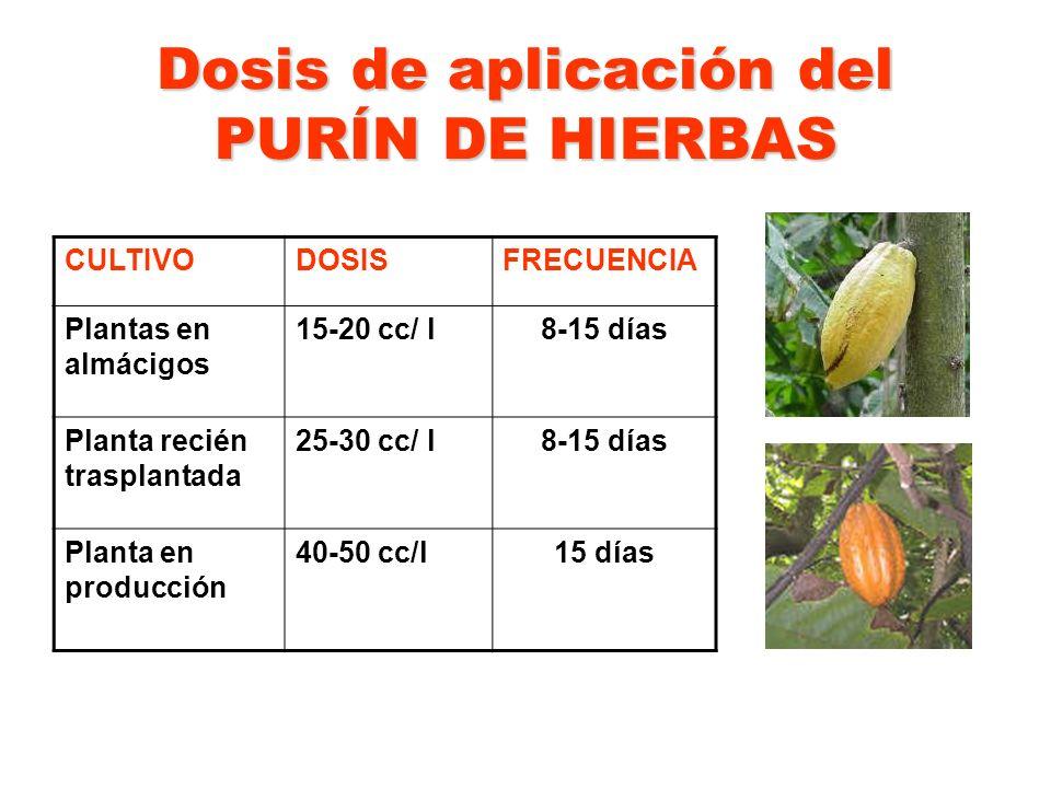 Dosis de aplicación del PURÍN DE HIERBAS CULTIVODOSISFRECUENCIA Plantas en almácigos 15-20 cc/ l8-15 días Planta recién trasplantada 25-30 cc/ l8-15 d