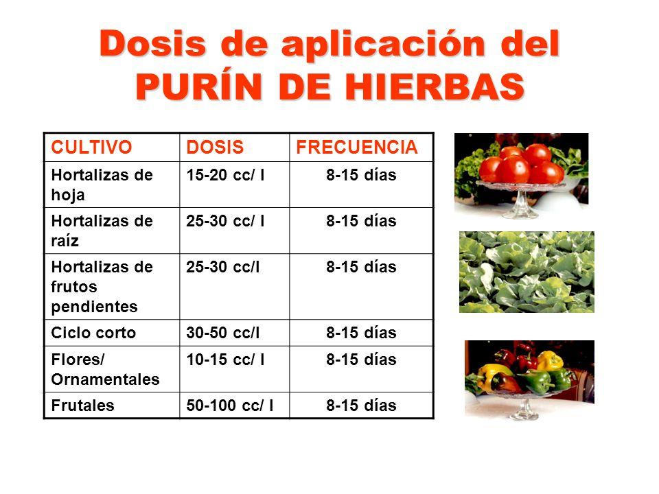 Dosis de aplicación del PURÍN DE HIERBAS CULTIVODOSISFRECUENCIA Hortalizas de hoja 15-20 cc/ l8-15 días Hortalizas de raíz 25-30 cc/ l8-15 días Hortal