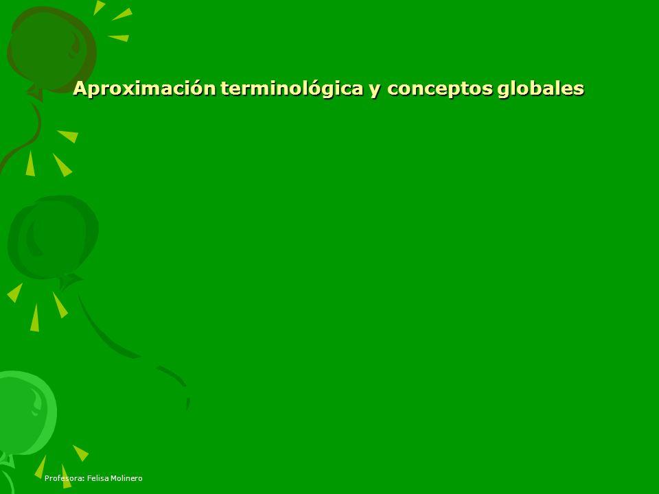 Aproximación terminológica y conceptos globales Profesora: Felisa Molinero
