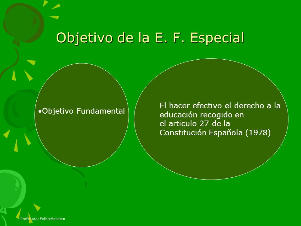 Objetivo de la E. F. Especial Objetivo Fundamental El hacer efectivo el derecho a la educación recogido en el articulo 27 de la Constitución Española