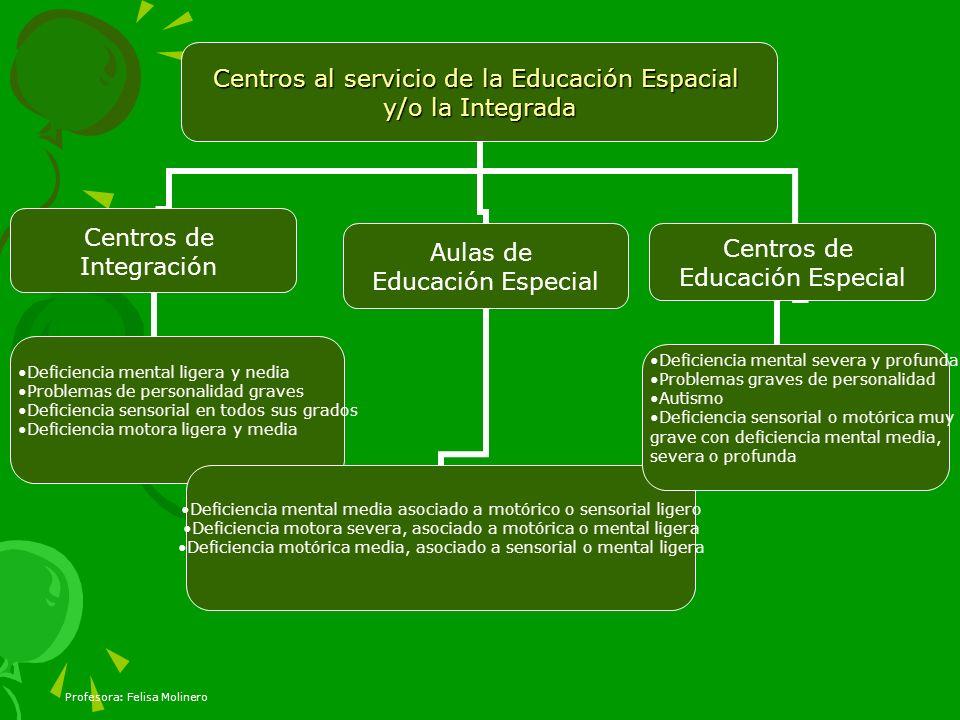 Profesora: Felisa Molinero Centros al servicio de la Educación Espacial y/o la Integrada Centros de Integración Deficiencia mental ligera y nedia Prob
