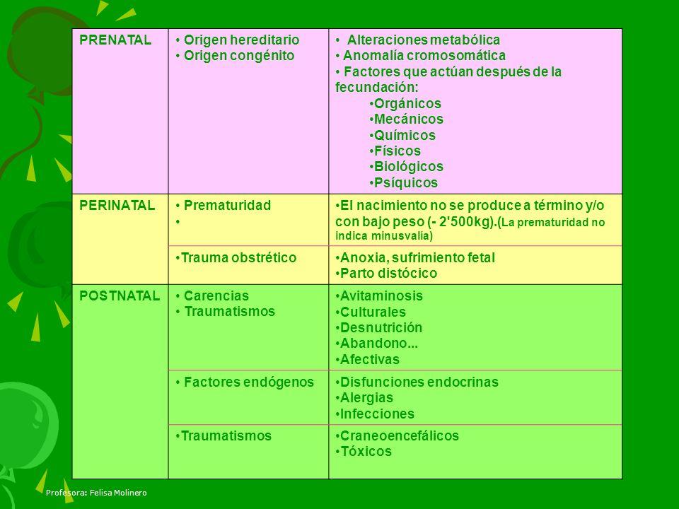 Profesora: Felisa Molinero PRENATAL Origen hereditario Origen congénito Alteraciones metabólica Anomalía cromosomática Factores que actúan después de
