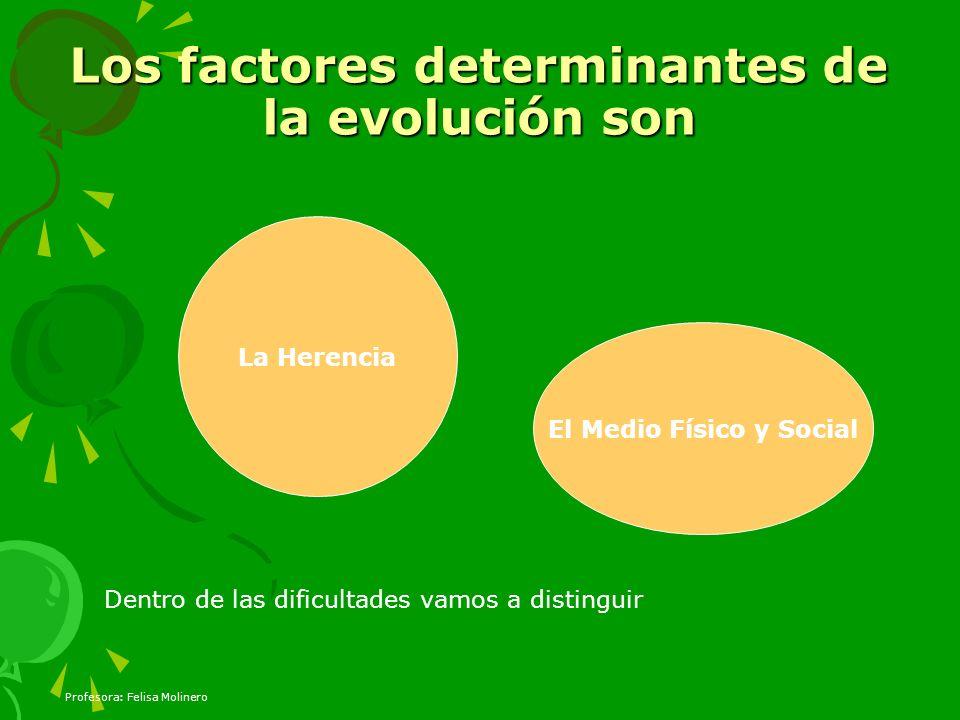 Profesora: Felisa Molinero Los factores determinantes de la evolución son La Herencia El Medio Físico y Social Dentro de las dificultades vamos a dist