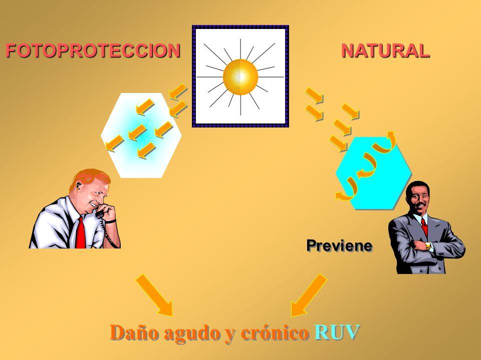 FOTOPROTECCIONNATURAL Daño agudo y crónico RUV Previene