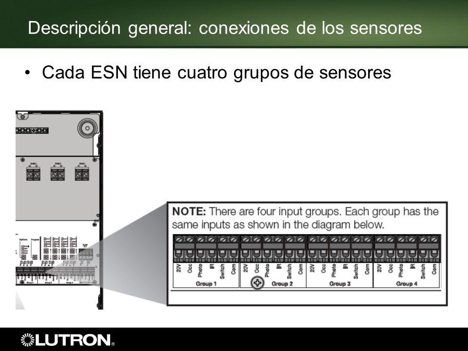 Descripción general: conexiones de los sensores Cada ESN tiene cuatro grupos de sensores