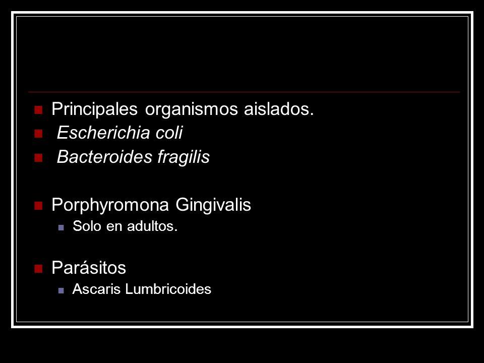 Principales organismos aislados. Escherichia coli Bacteroides fragilis Porphyromona Gingivalis Solo en adultos. Parásitos Ascaris Lumbricoides