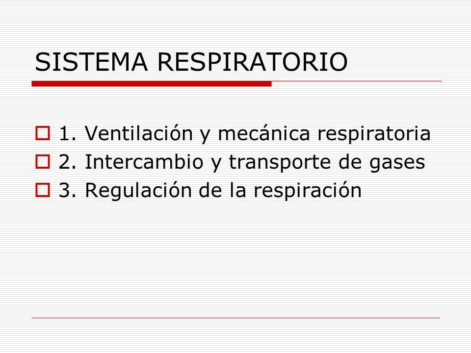 SISTEMA RESPIRATORIO 1. Ventilación y mecánica respiratoria 2. Intercambio y transporte de gases 3. Regulación de la respiración