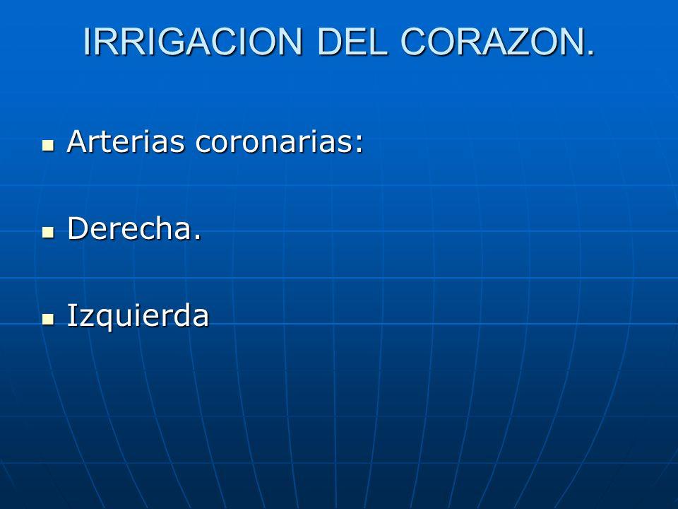 IRRIGACION DEL CORAZON. Arterias coronarias: Arterias coronarias: Derecha. Derecha. Izquierda Izquierda