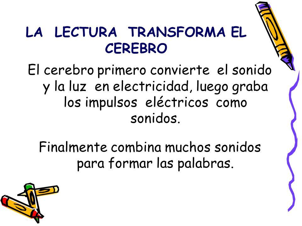 LA LECTURA TRANSFORMA EL CEREBRO El cerebro primero convierte el sonido y la luz en electricidad, luego graba los impulsos eléctricos como sonidos. Fi
