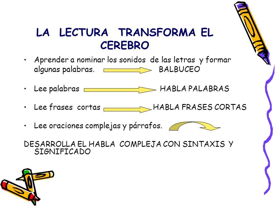 LA LECTURA TRANSFORMA EL CEREBRO Aprender a nominar los sonidos de las letras y formar algunas palabras. BALBUCEO Lee palabras HABLA PALABRAS Lee fras