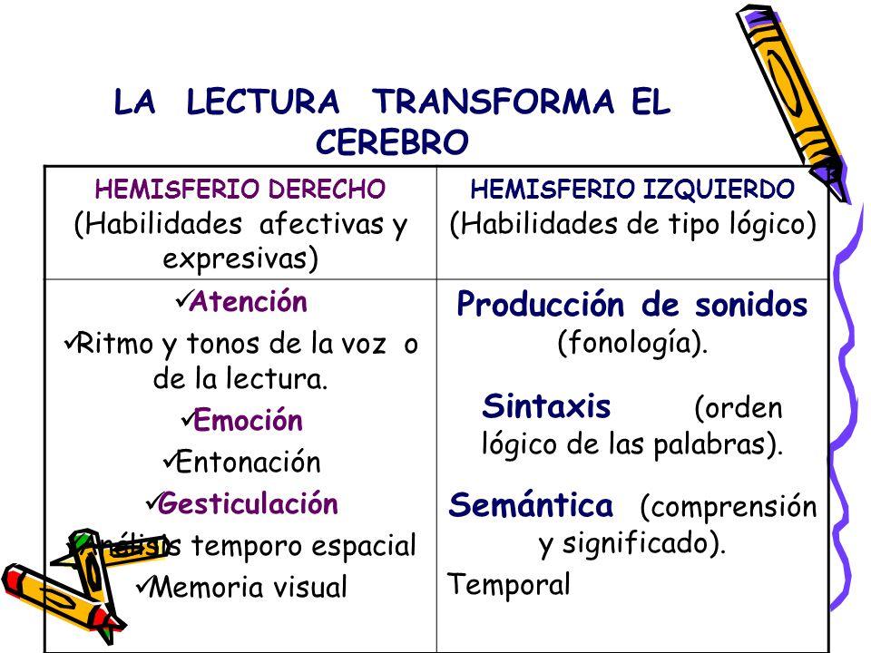 LA LECTURA TRANSFORMA EL CEREBRO HEMISFERIO DERECHO (Habilidades afectivas y expresivas) HEMISFERIO IZQUIERDO (Habilidades de tipo lógico) Reconocimiento de figuras geométricas Reconocimiento de sonidos ambientales y musicales.