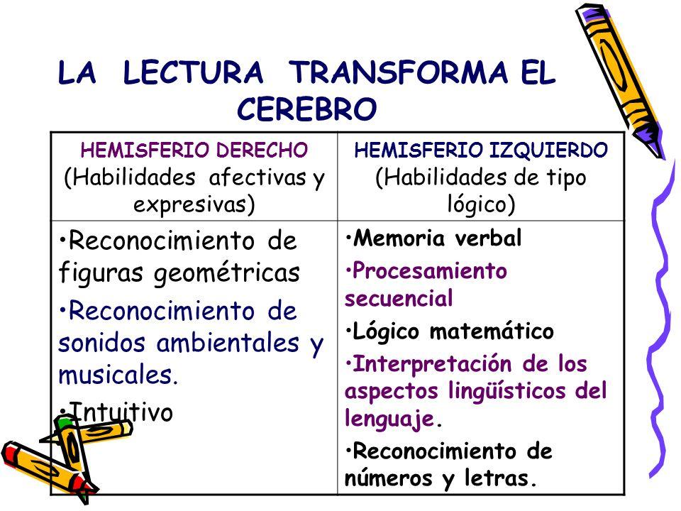 LA LECTURA TRANSFORMA EL CEREBRO HEMISFERIO IZQUIERDO (Habilidades de tipo lógico) Reglas gramaticales ( reglas para dar un orden lógico a las palabras y sus significados) Acceso al léxico (estar expuestos a escuchar y leer gran cantidad de vocabulario) Conversión de signos gráficos es estructuras semánticas (decodificación fonética, primaria y secundaria).