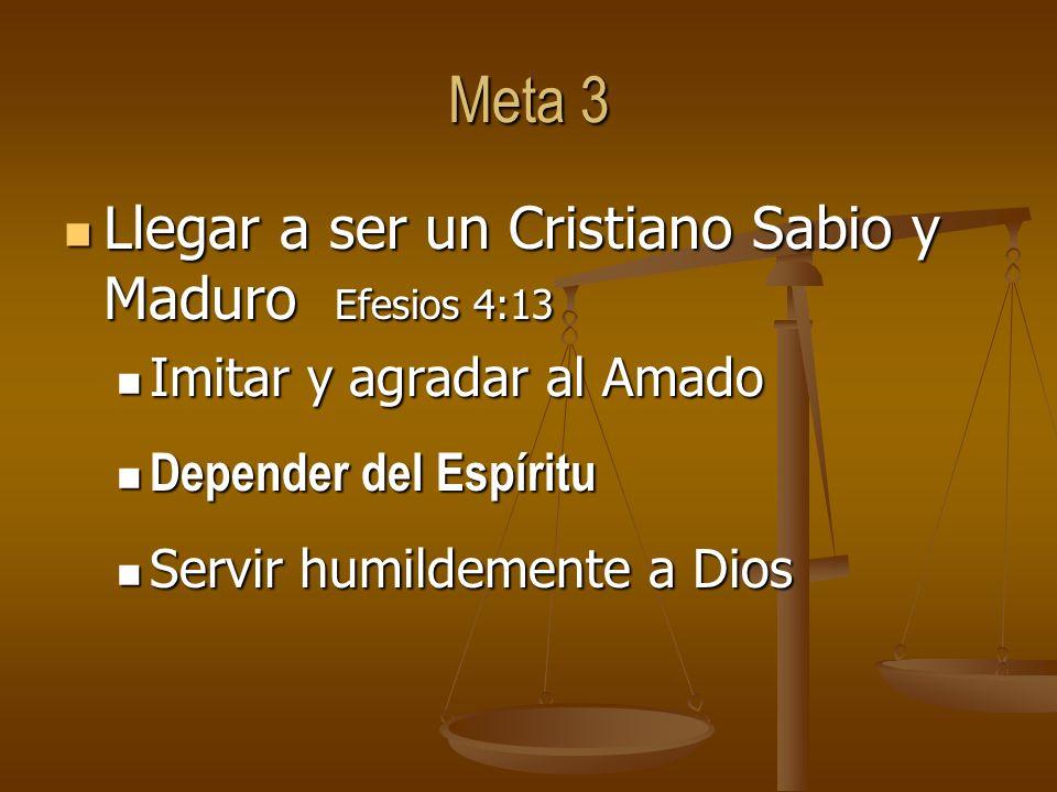 Meta 3 Llegar a ser un Cristiano Sabio y Maduro Efesios 4:13 Llegar a ser un Cristiano Sabio y Maduro Efesios 4:13 Imitar y agradar al Amado Imitar y agradar al Amado Depender del Espíritu Depender del Espíritu Servir humildemente a Dios Servir humildemente a Dios