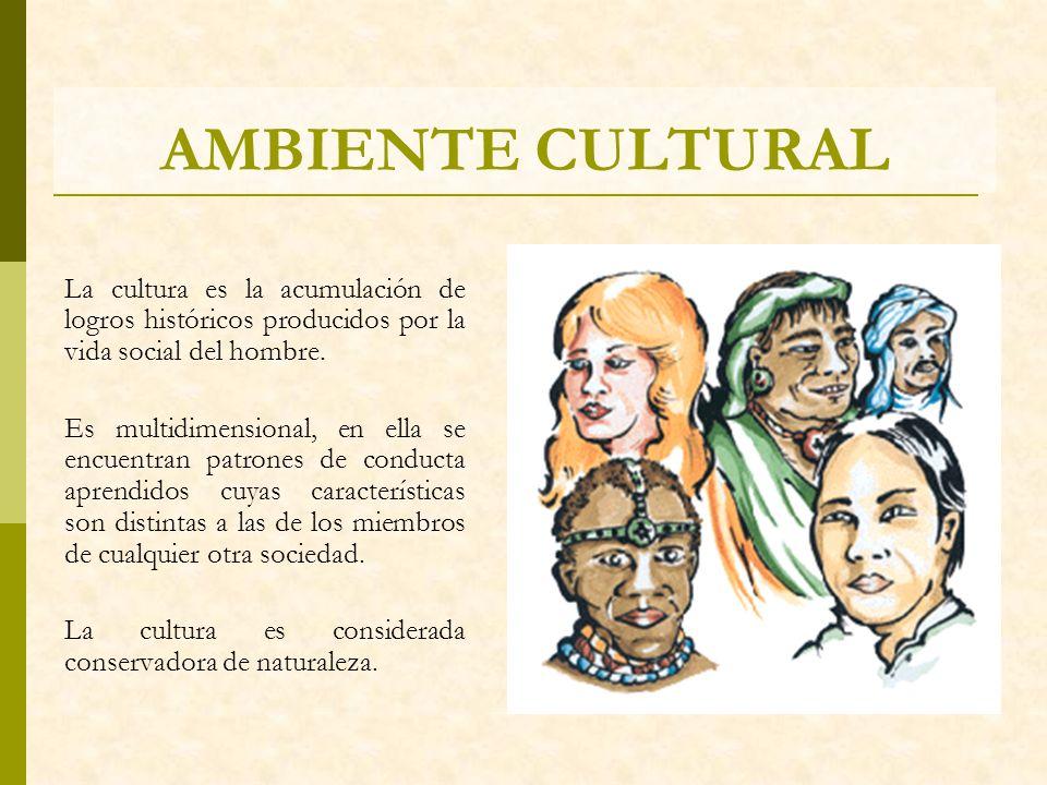 AMBIENTE CULTURAL La cultura es la acumulación de logros históricos producidos por la vida social del hombre. Es multidimensional, en ella se encuentr