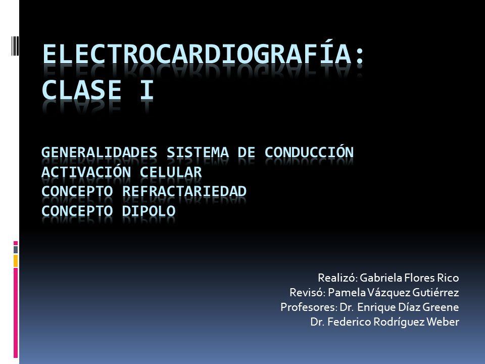 Generalidades del sistema de conducción Miocito: células musculares estriadas.