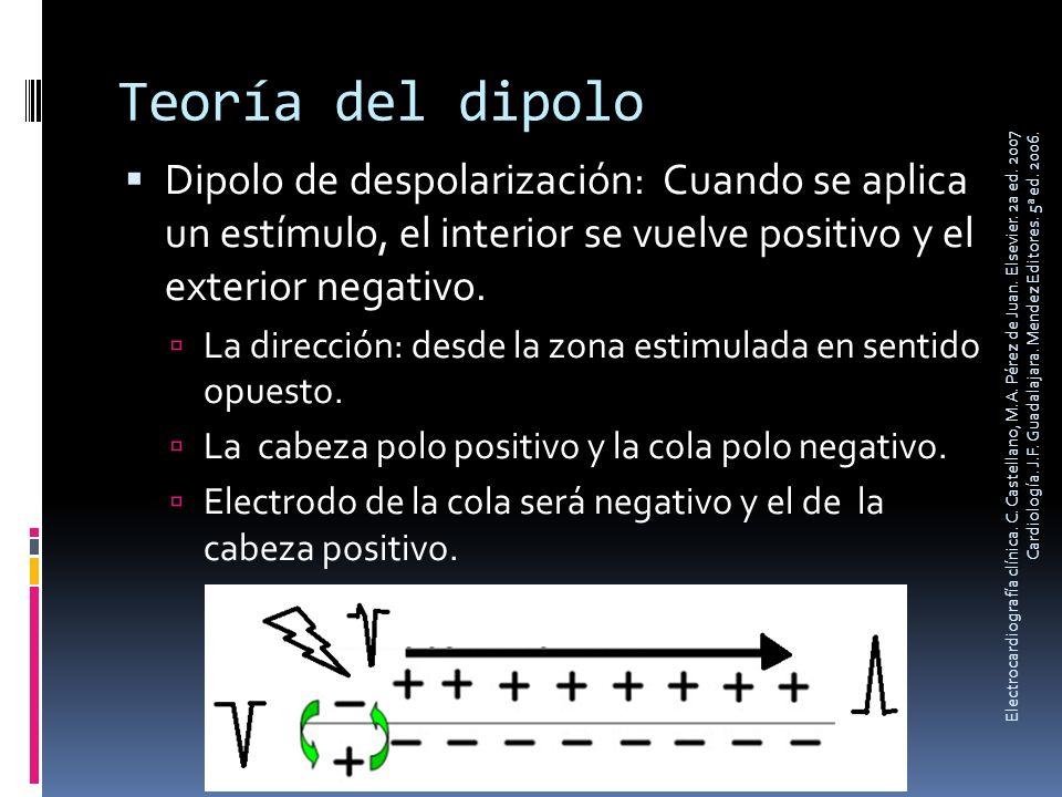 Teoría del dipolo Dipolo de despolarización: Cuando se aplica un estímulo, el interior se vuelve positivo y el exterior negativo. La dirección: desde