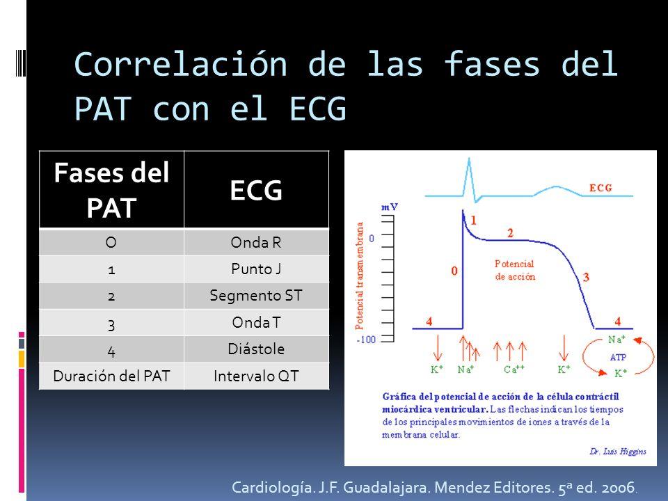 Correlación de las fases del PAT con el ECG Fases del PAT ECG OOnda R 1Punto J 2Segmento ST 3Onda T 4Diástole Duración del PATIntervalo QT Cardiología