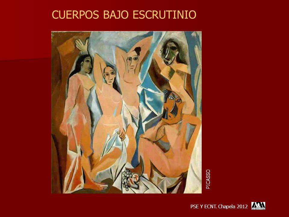 CUERPOS BAJO ESCRUTINIO PSE Y ECNT. Chapela 2012 PICASSO