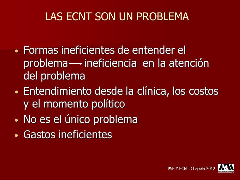 Formas ineficientes de entender el problema ineficiencia en la atención del problema Formas ineficientes de entender el problema ineficiencia en la at