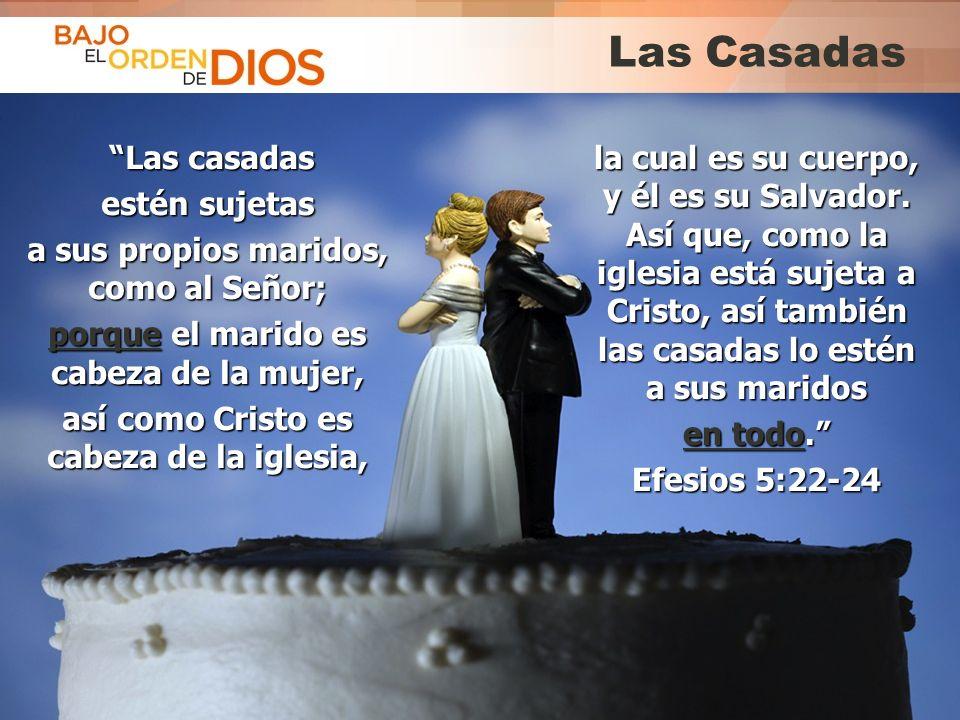 © 2013 Todos los derechos reservados ® Bajo el Orden de Dios es una marca registrada Las Casadas Las casadas Las casadas estén sujetas a sus propios m