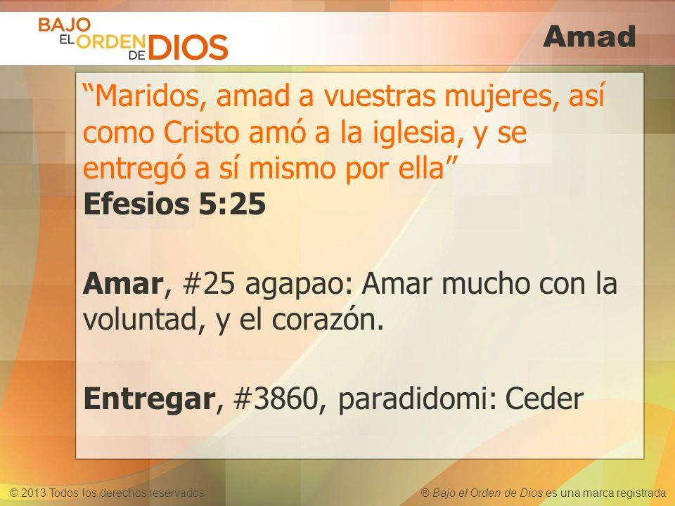 © 2013 Todos los derechos reservados ® Bajo el Orden de Dios es una marca registrada Amad Maridos, amad a vuestras mujeres, así como Cristo amó a la i