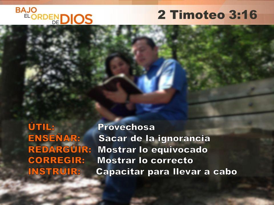 © 2013 Todos los derechos reservados ® Bajo el Orden de Dios es una marca registrada 2 Timoteo 3:16
