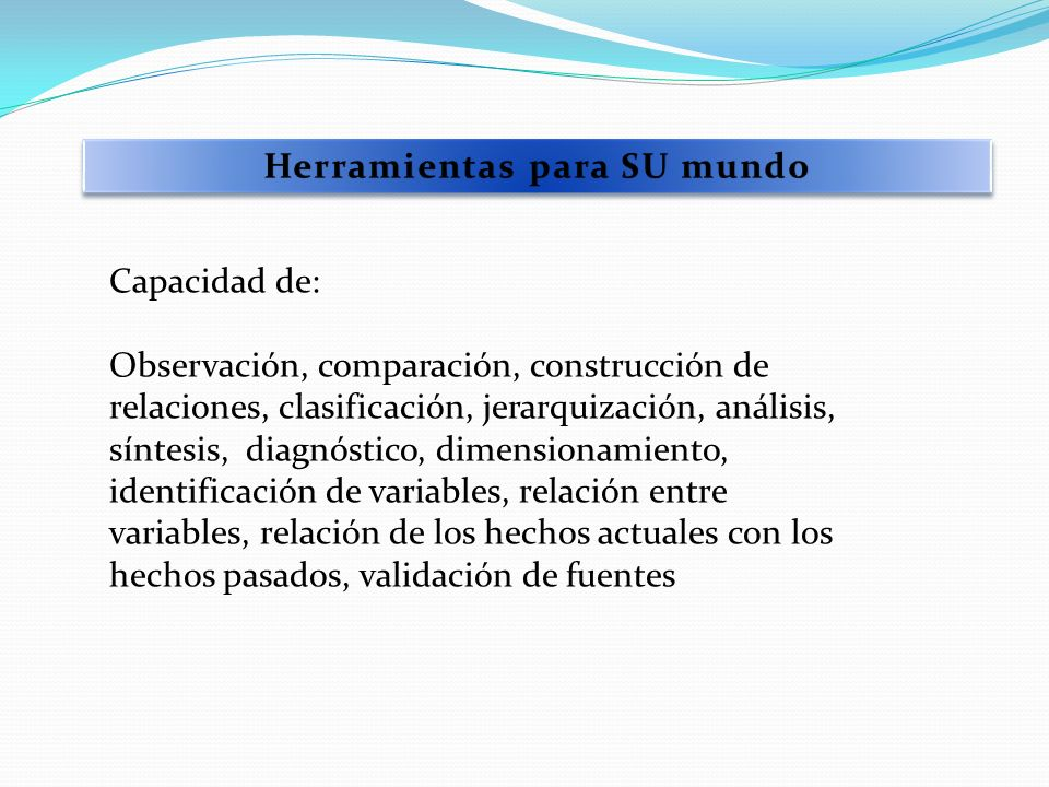 Capacidad de: Observación, comparación, construcción de relaciones, clasificación, jerarquización, análisis, síntesis, diagnóstico, dimensionamiento,