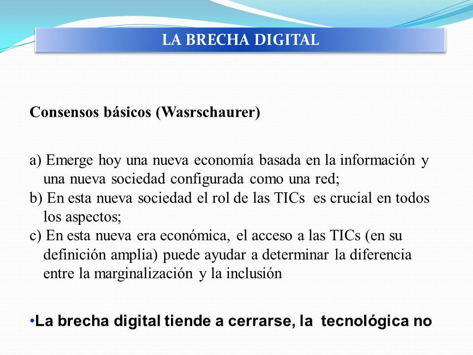 Consensos básicos (Wasrschaurer) a) Emerge hoy una nueva economía basada en la información y una nueva sociedad configurada como una red; b) En esta n