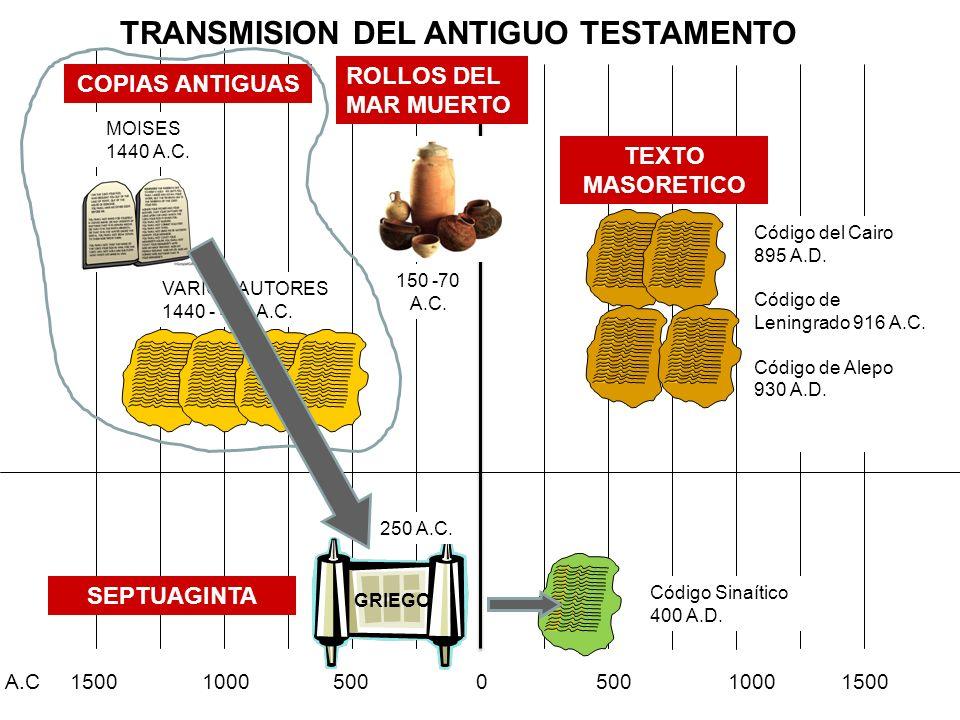 A.C 1500 1000 500 0 500 1000 1500 TRANSMISION DEL ANTIGUO TESTAMENTO MOISES 1440 A.C. VARIOS AUTORES 1440 - 400 A.C. COPIAS ANTIGUASSEPTUAGINTA GRIEGO
