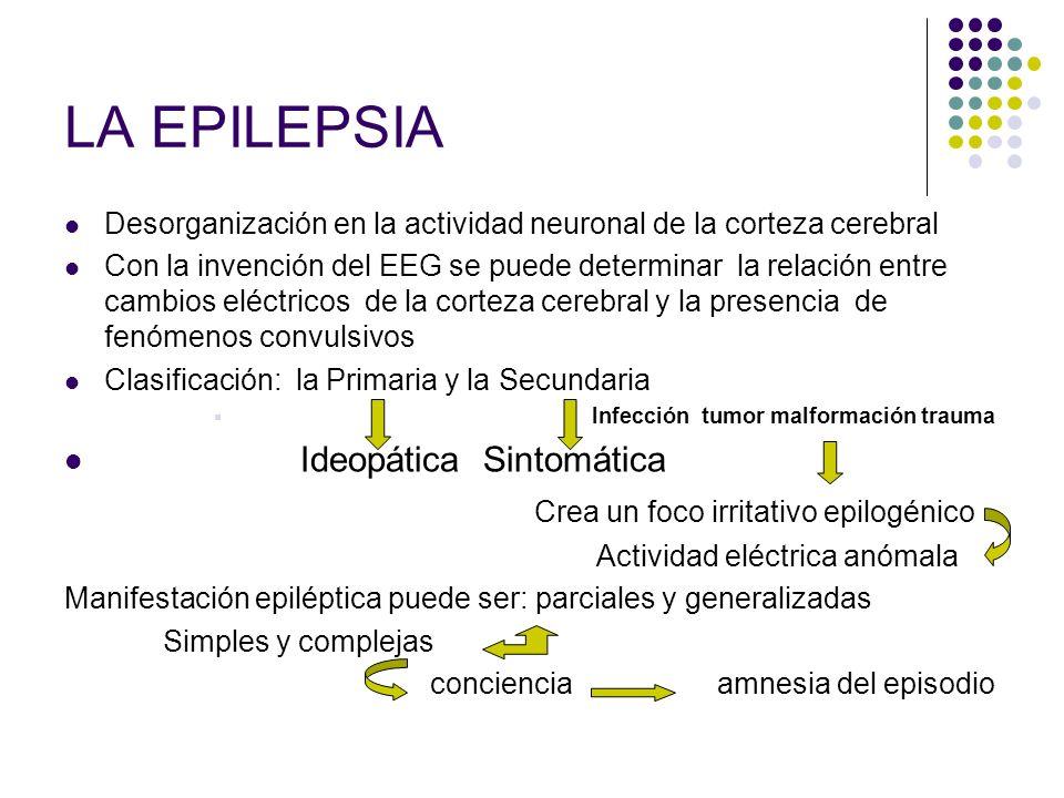 LA EPILEPSIA Desorganización en la actividad neuronal de la corteza cerebral Con la invención del EEG se puede determinar la relación entre cambios el