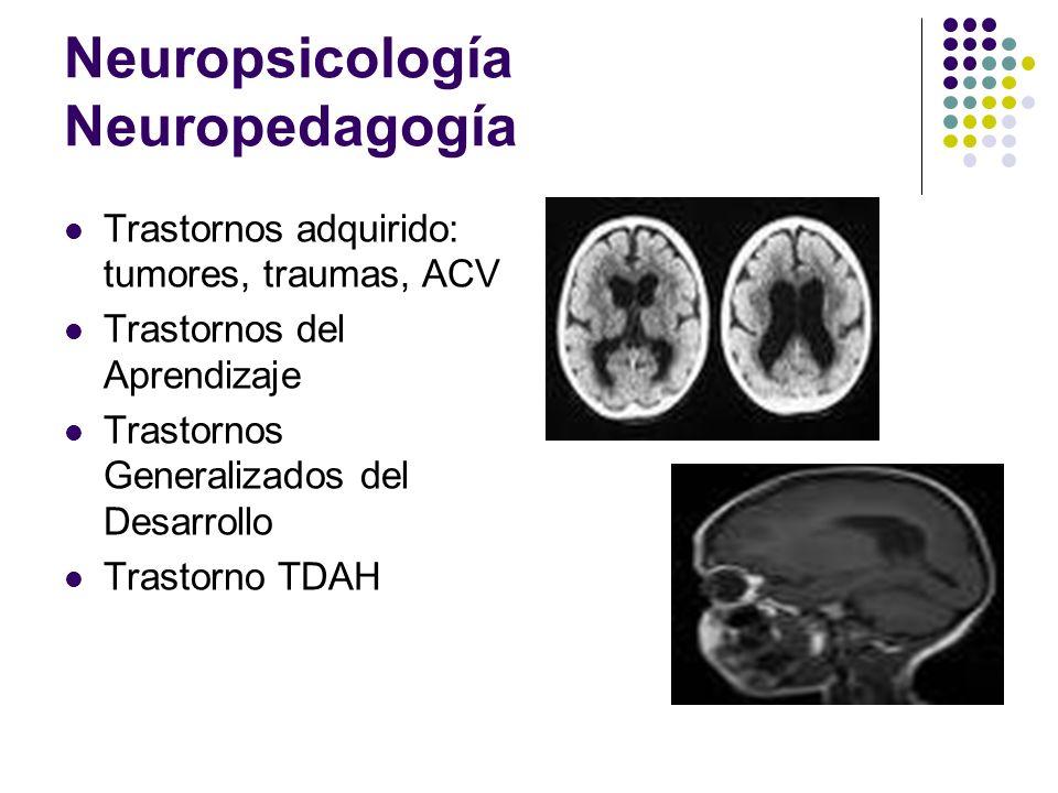 Neuropsicología Neuropedagogía Trastornos adquirido: tumores, traumas, ACV Trastornos del Aprendizaje Trastornos Generalizados del Desarrollo Trastorn