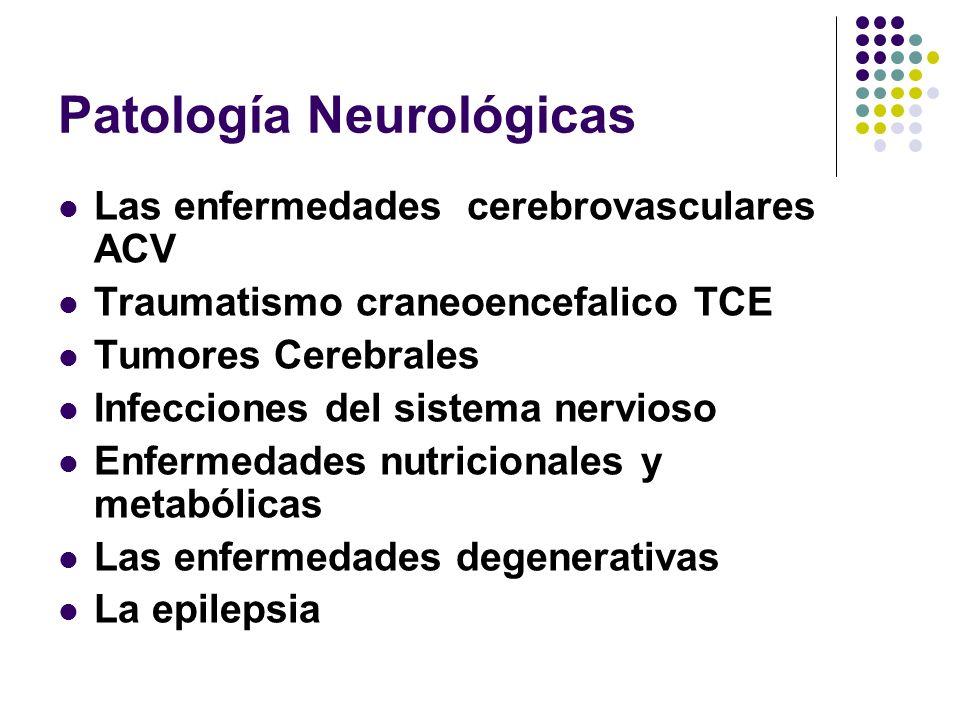 Patología Neurológicas Las enfermedades cerebrovasculares ACV Traumatismo craneoencefalico TCE Tumores Cerebrales Infecciones del sistema nervioso Enf