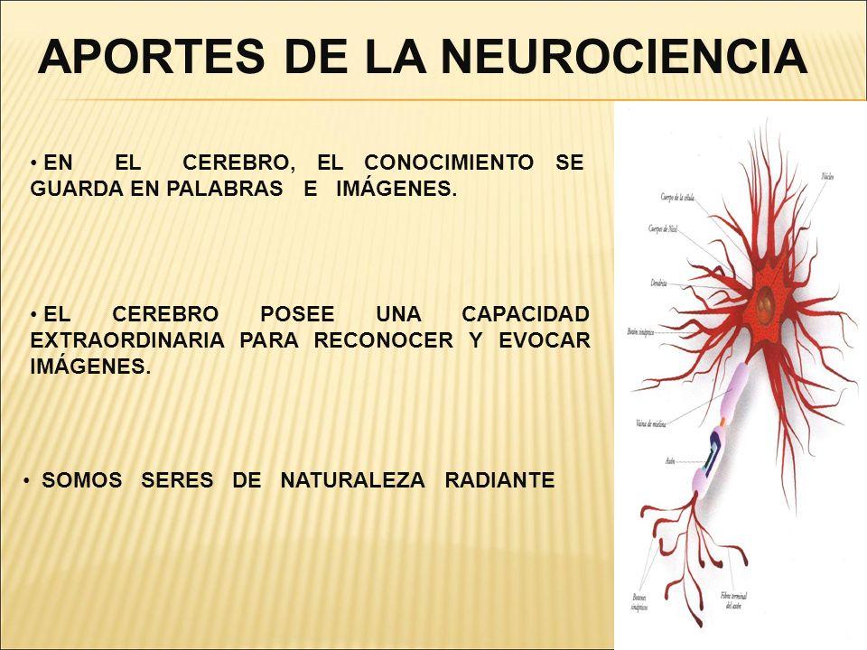 APORTES DE LA NEUROCIENCIA EN EL CEREBRO, EL CONOCIMIENTO SE GUARDA EN PALABRAS E IMÁGENES. EL CEREBRO POSEE UNA CAPACIDAD EXTRAORDINARIA PARA RECONOC