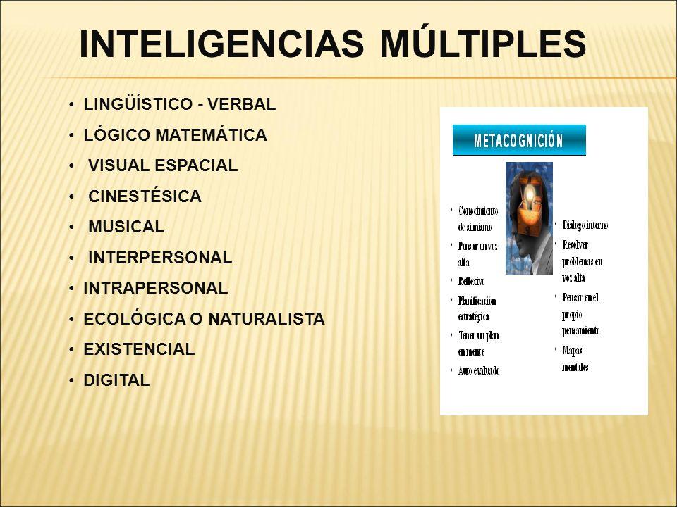 LINGÜÍSTICO - VERBAL LÓGICO MATEMÁTICA VISUAL ESPACIAL CINESTÉSICA MUSICAL INTERPERSONAL INTRAPERSONAL ECOLÓGICA O NATURALISTA EXISTENCIAL DIGITAL INT